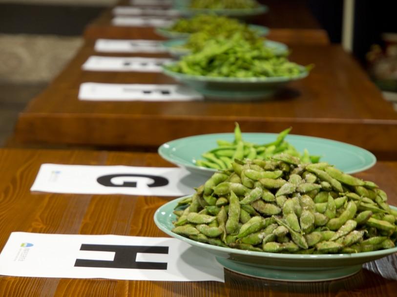 毛豆のきき豆大会