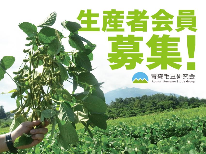 青森毛豆生産者会員募集のお知らせ